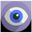 icon-videosorveglianza