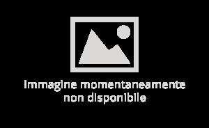immagine-non-disponibile